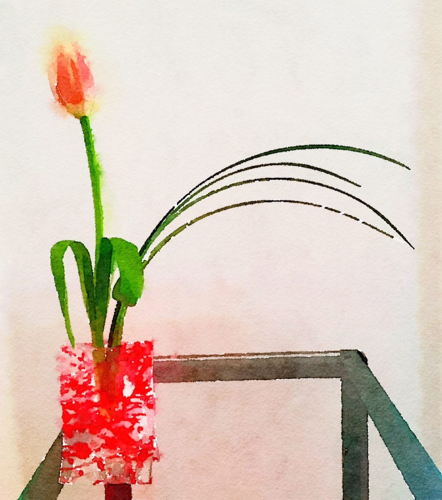 Week Six: Multi-Colored Tulip and Bear Grass in a Sassy Red Vase