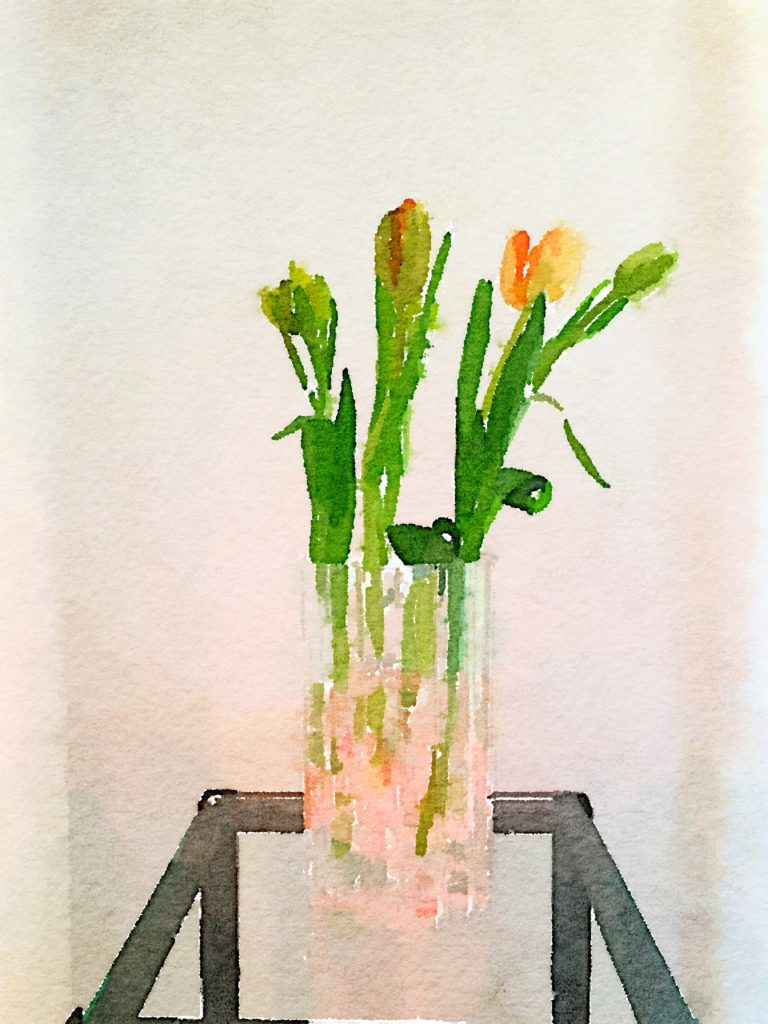 Week Four: Yellow Tulips and Pink Light