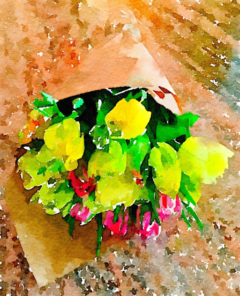 Week Three: Fresh Pike Place Market Tulips in Waterlogue