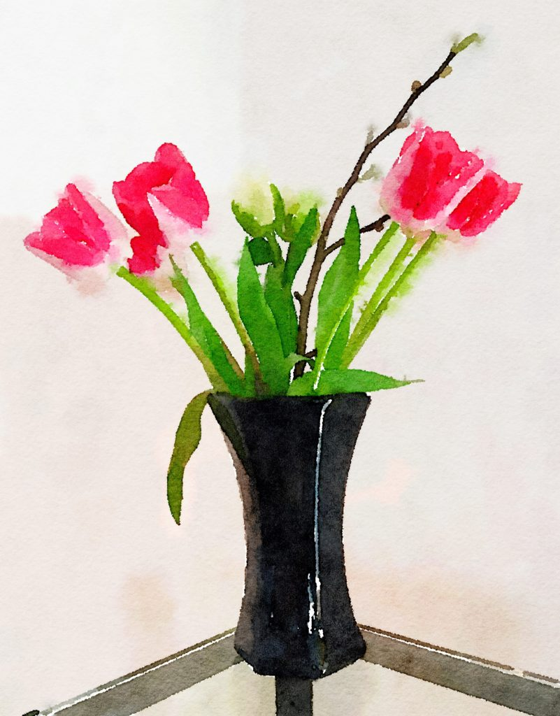 Week Ten: Deep Pink and White Tulips with Magnolia Branch in Black Asian Vase