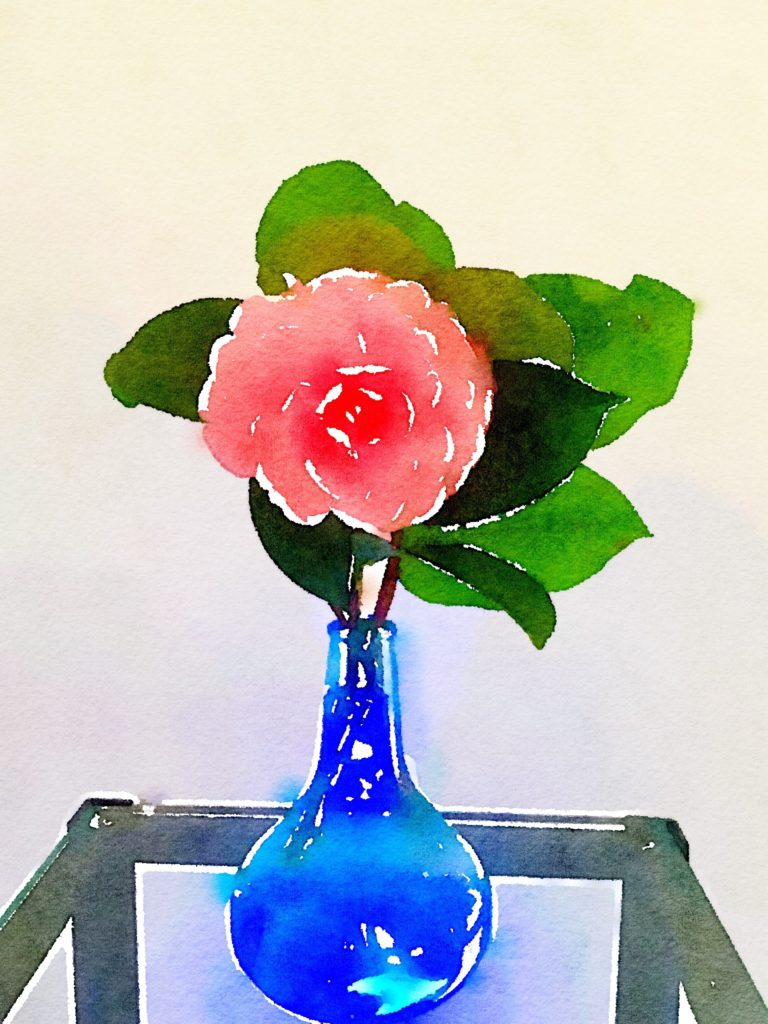 Single Pink Camellia in a Cobalt Buddha Vase