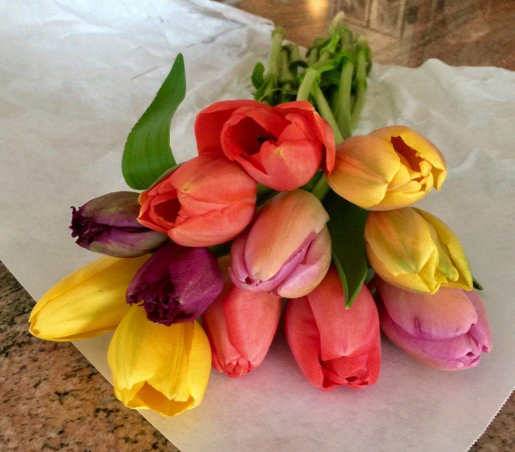 Week Eight: Fresh Pike Place Market Tulips