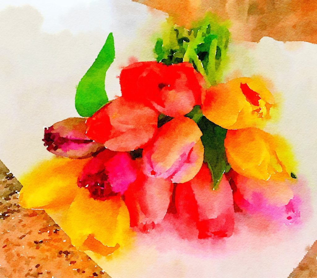 Week Eight: Fresh Pike Place Market Tulips in Waterlogue