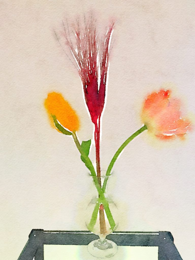 Week Fifteen: Peach and Yellow Tulips and Red Feathers in a Clear Vase