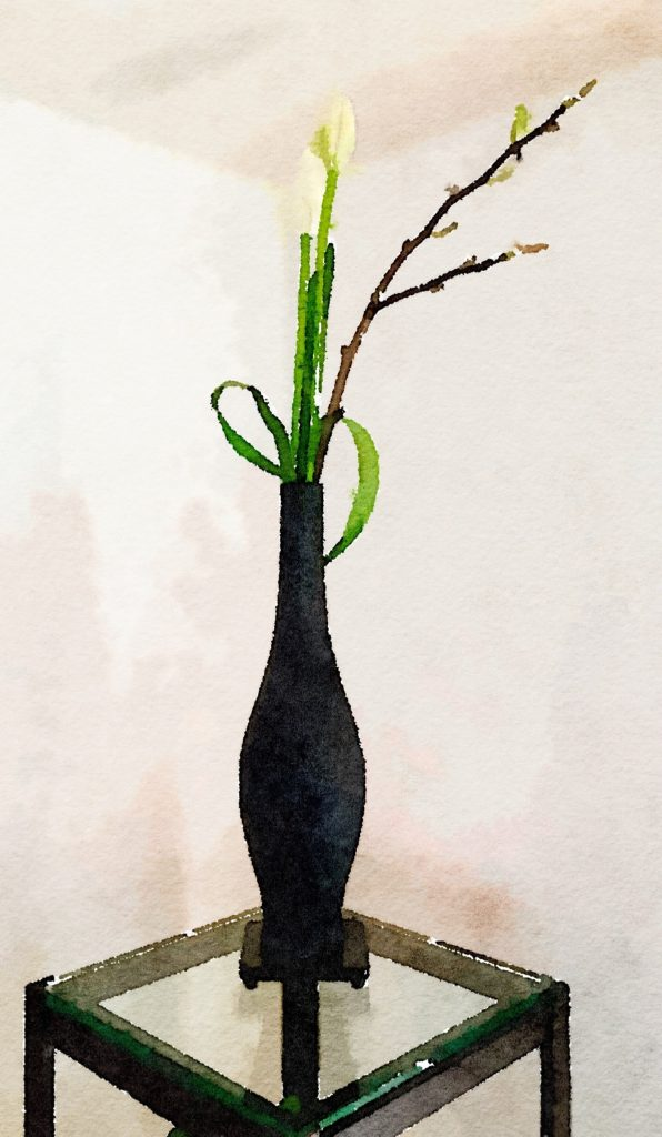 Week Eleven: Tall Black Asian Vase With Two White Tulips and Magnolia Branch