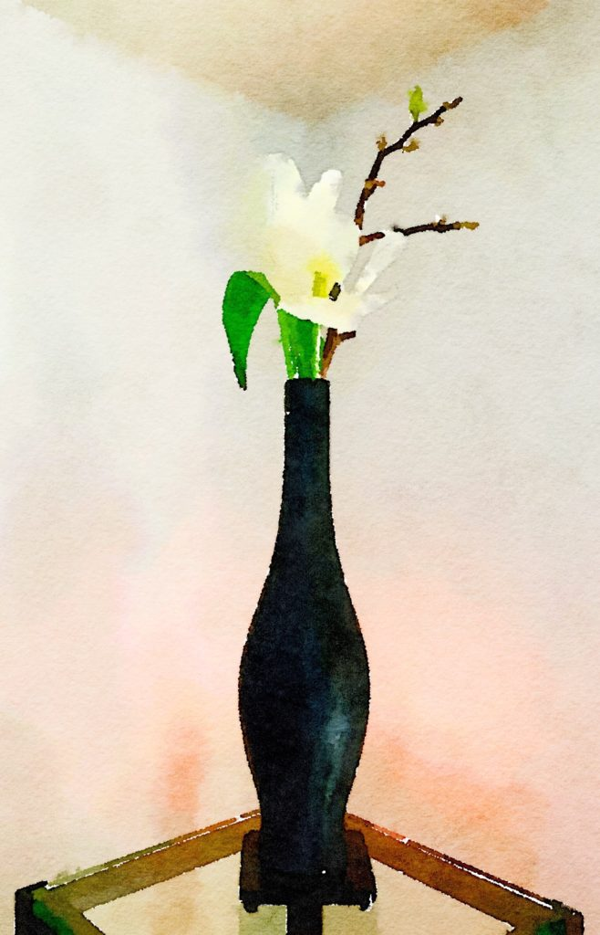 Week Eleven: Two White Tulips and Magnolia Branch in a Tall Black Vase