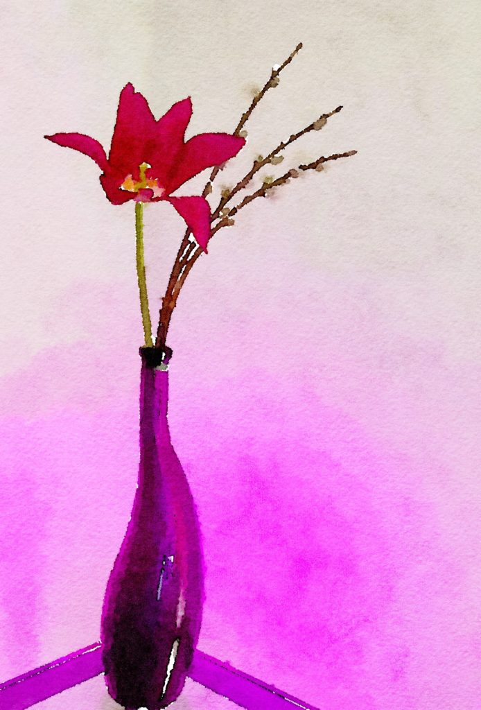 Week Fourteen: Single Red Tulip, Pussy Willows, and Purple Jelly Bean Vase
