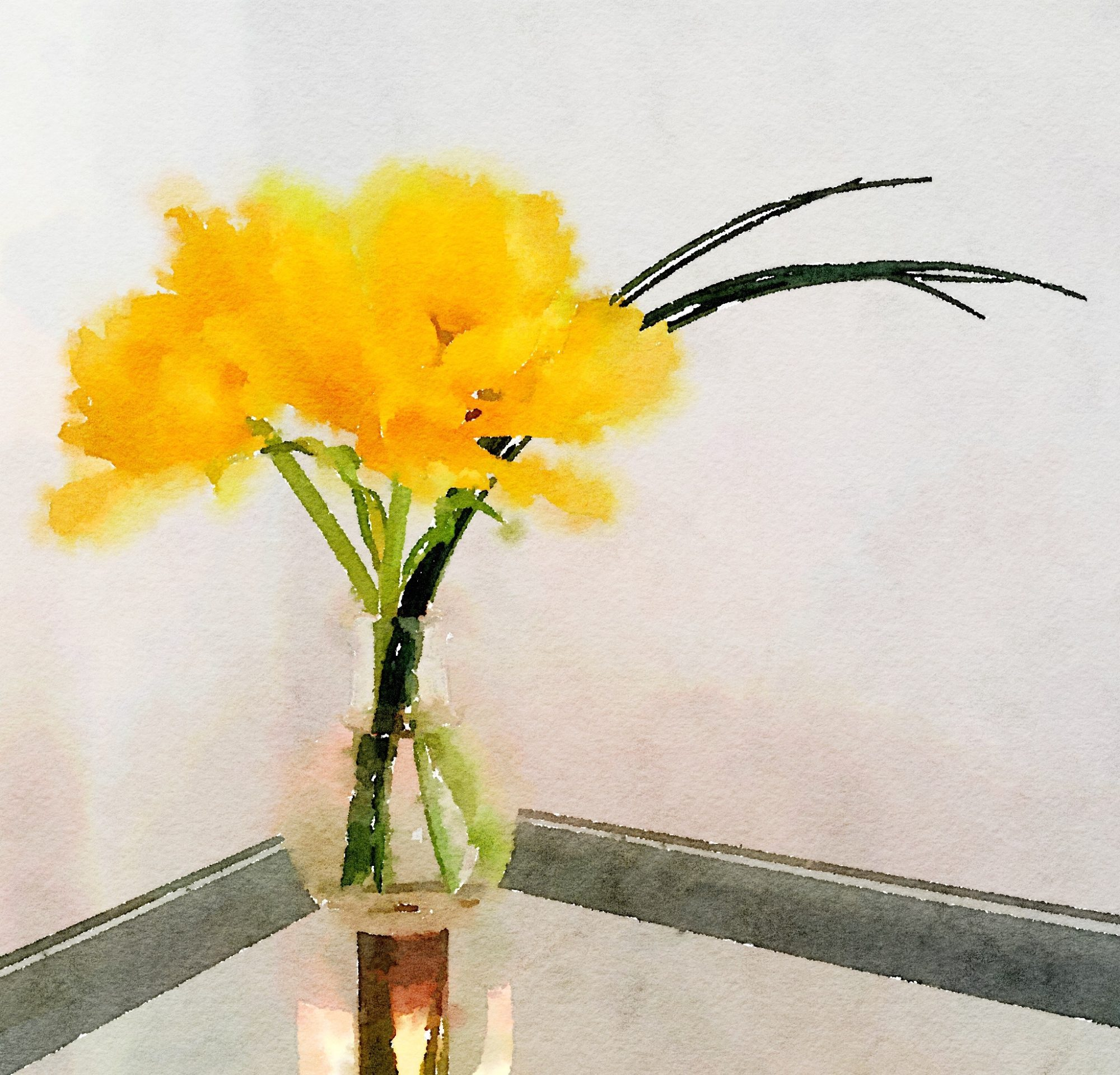 Week Fourteen: Yellow Tulips and Bear Grass