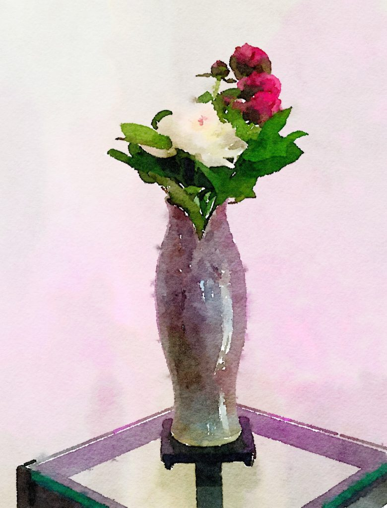 Week Eighteen: White and Deep Pink Peonies in a Purple Terracotta Vase