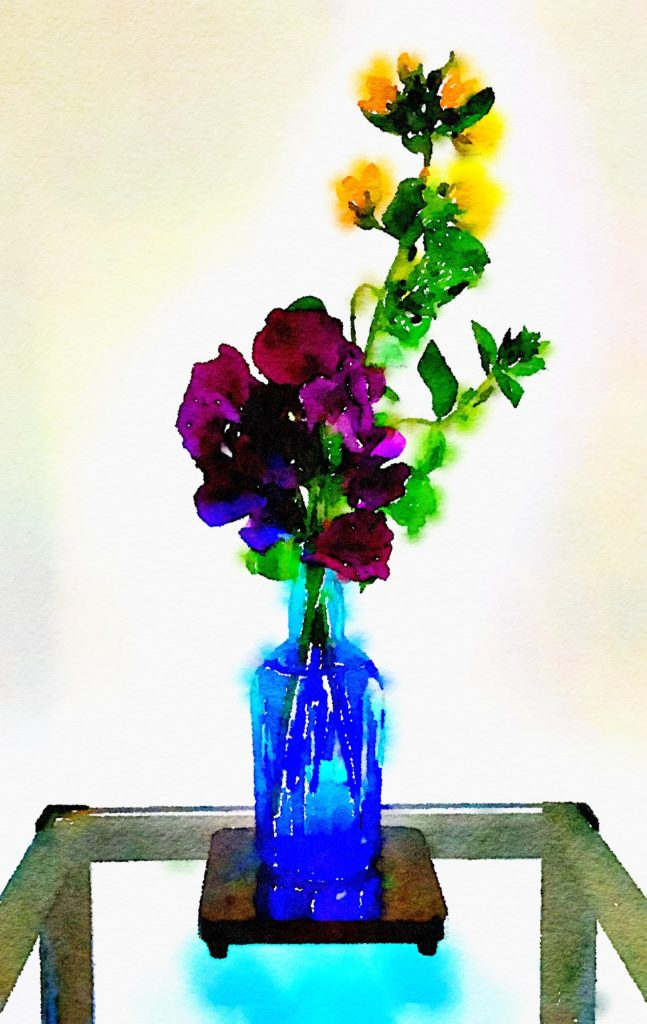 Week Nineteen: Deep-Purple Sweet Peas and Shrubby Yellow Crest in a Blue Vase