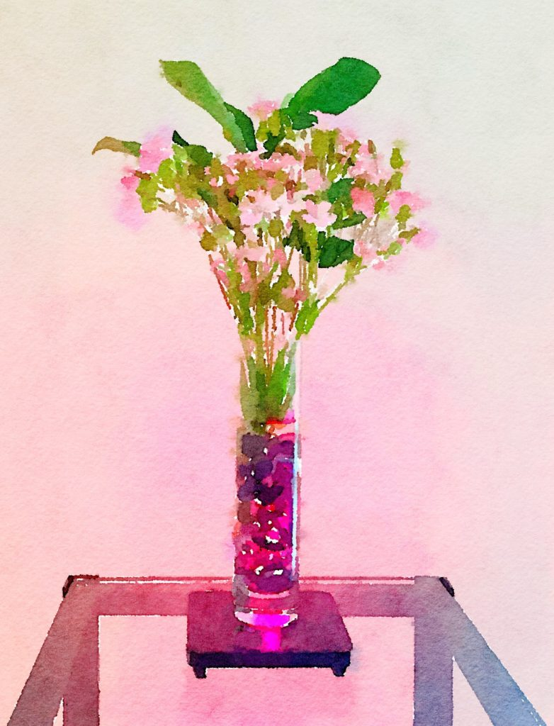 Week Nineteen: Pink Flowers in a Back-Lighted Clear Vase