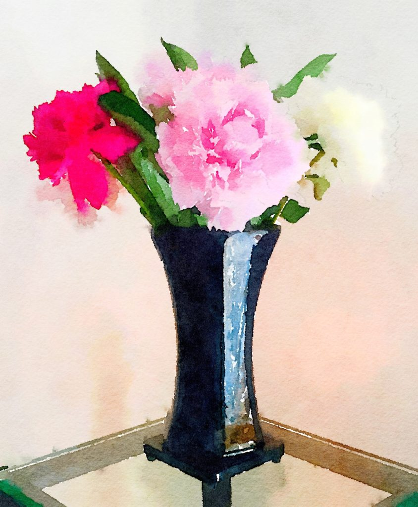 Week Seventeen: Dark Pink, Light Pink, and White Peonies in a Black Lacquer Vase
