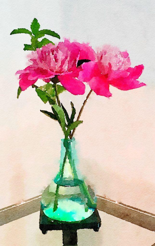 Week Seventeen: Pink Peonies in a Clear Turquoise Vase