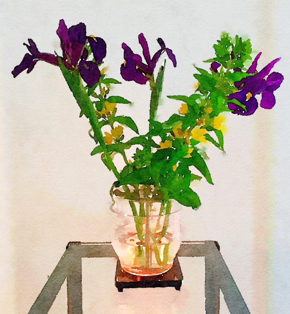 Week Seventeen: Purple Irises and Shrubby Yellow Crest in My Ikebana Vase