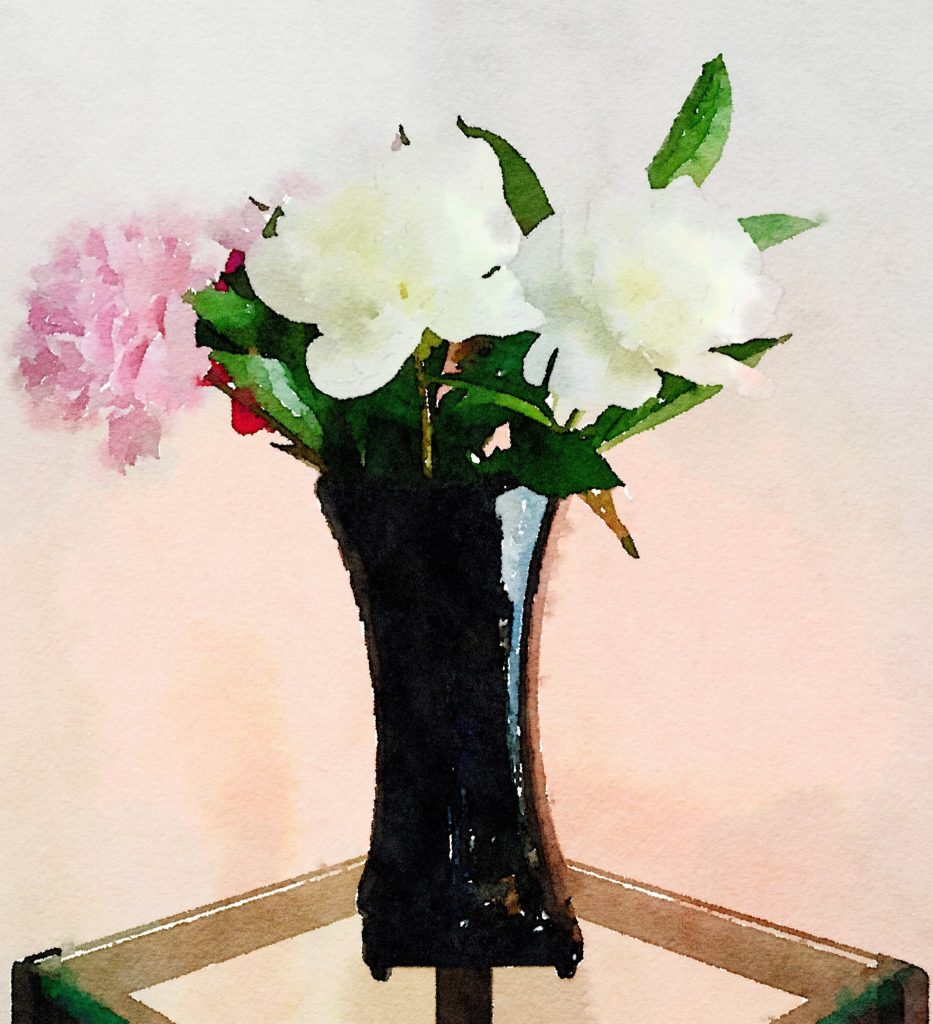 Week Seventeen: White and Pink Peonies in a Black Lacquer Vase