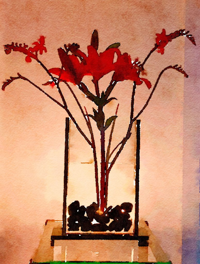 Week Twenty: Ikebana Red Lily and Kangaroo Paws at Night