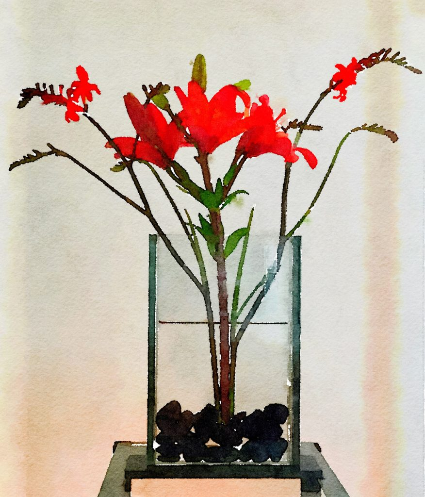 Week Twenty: Ikebana Red Lily and Kangaroo Paws in Natural Light