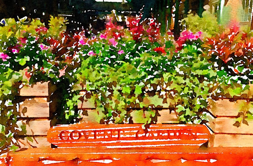 Week Twenty-One: Covent Garden Sign and Flowers
