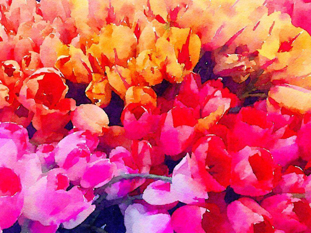 Week Twenty-Two: Floral Color Block 1