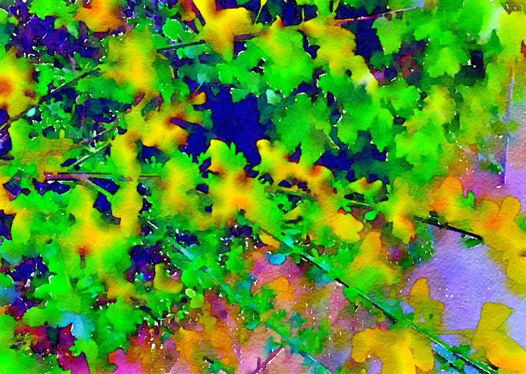 Week Twenty-Two: Floral Color Block 8