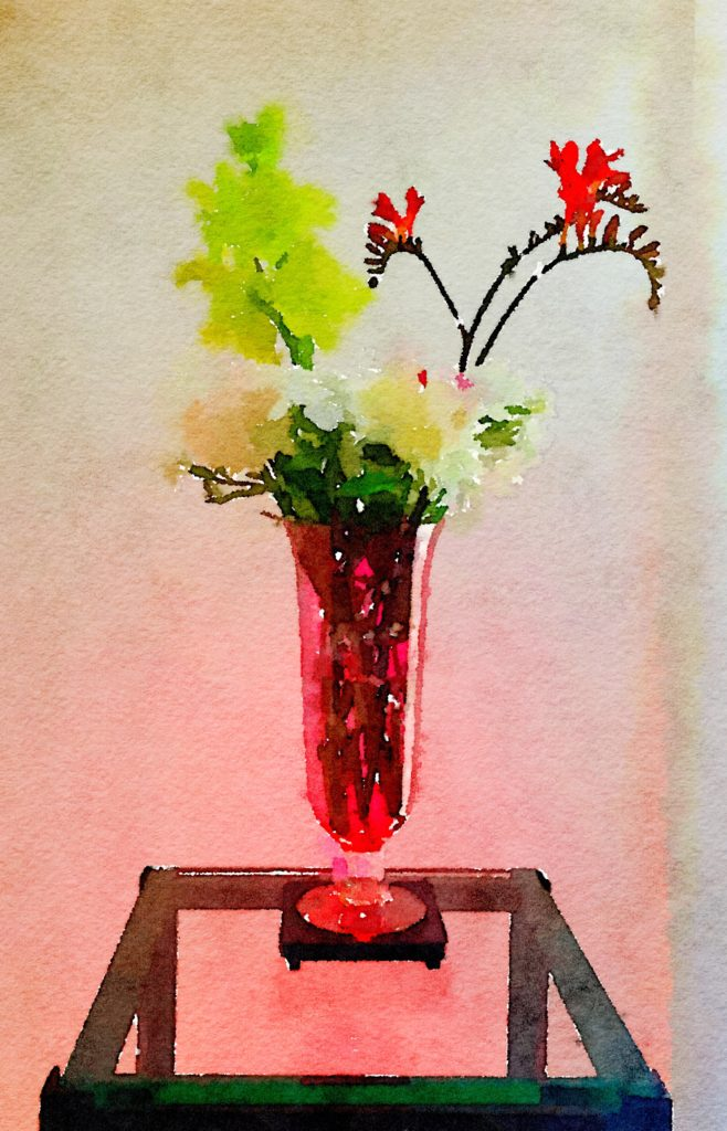Bouquet-a-Week Project Week Twenty-Five: White Peonies, Lime Gladiola, and Kangaroo Paw in Tall Ruby Vase