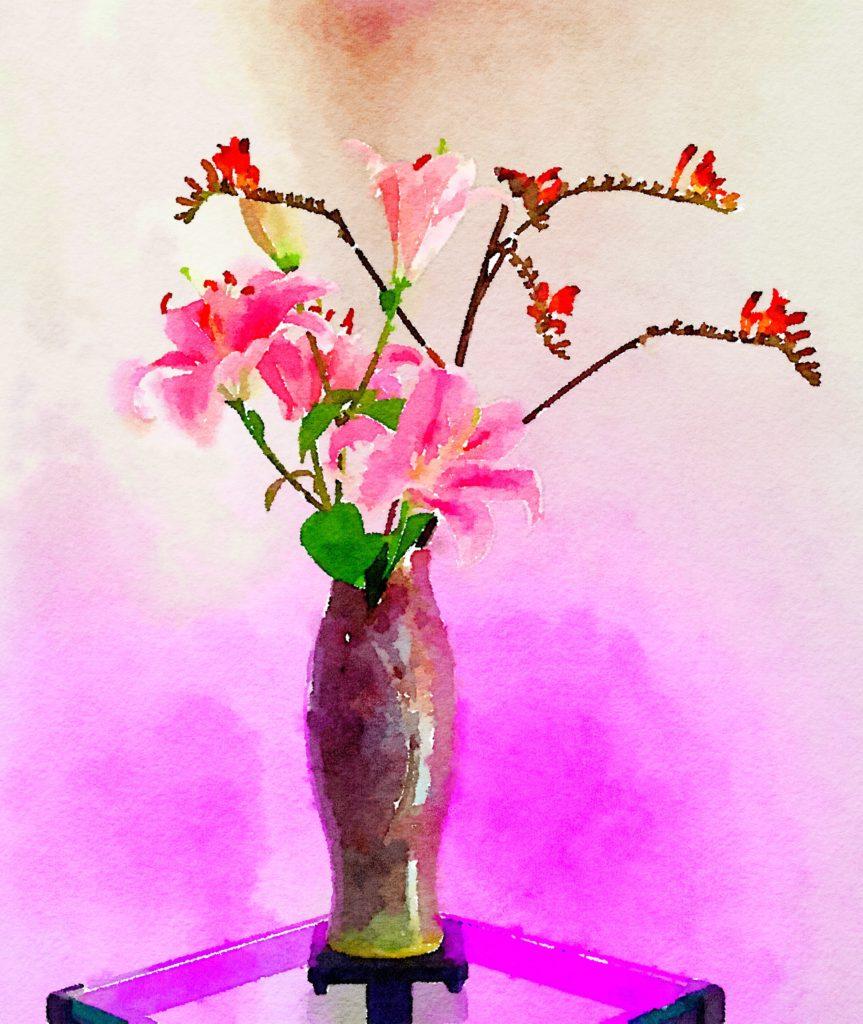 Week Twenty-Four: Pink Lilies and Kangaroo Paw
