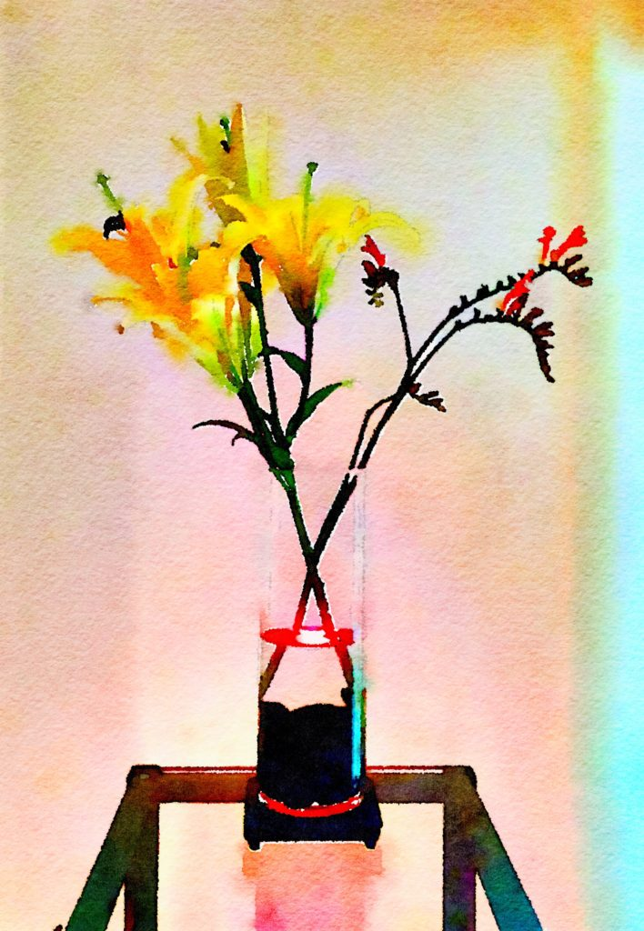 Week Twenty-Six: Yellow Lilies and Kangaroo Paw in Tall Clear Cylinder