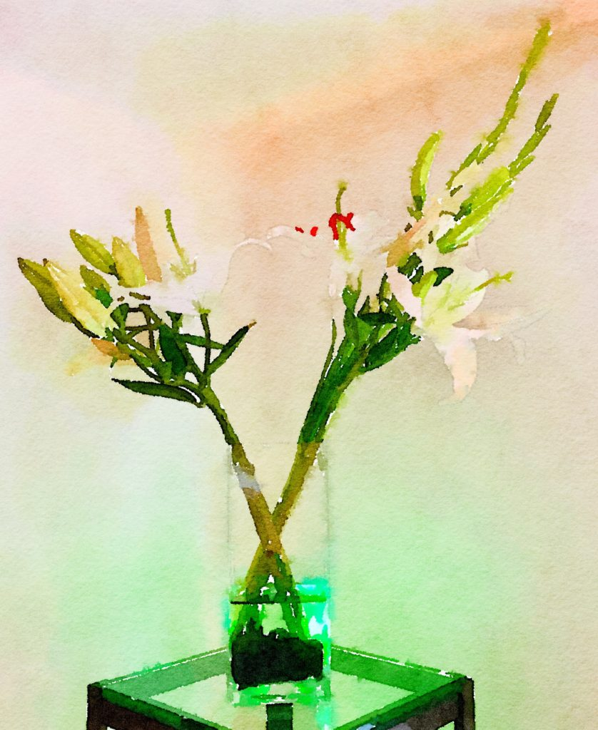 Braiden Blossoms Week Thirty: White Lilies and Gladiolas in a Clear Rectangular Vase