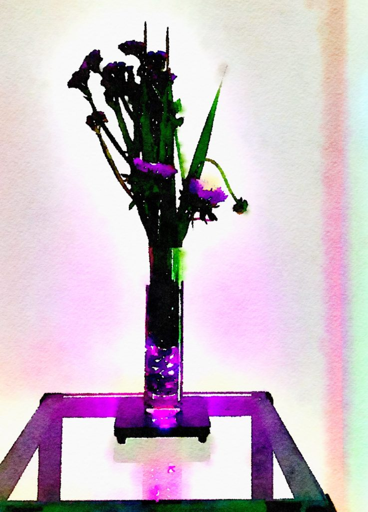 Braiden Blossoms Bouquet-a-Week Project Week Thirty-Eight: Purple Flowers in a Clear Conical Vase