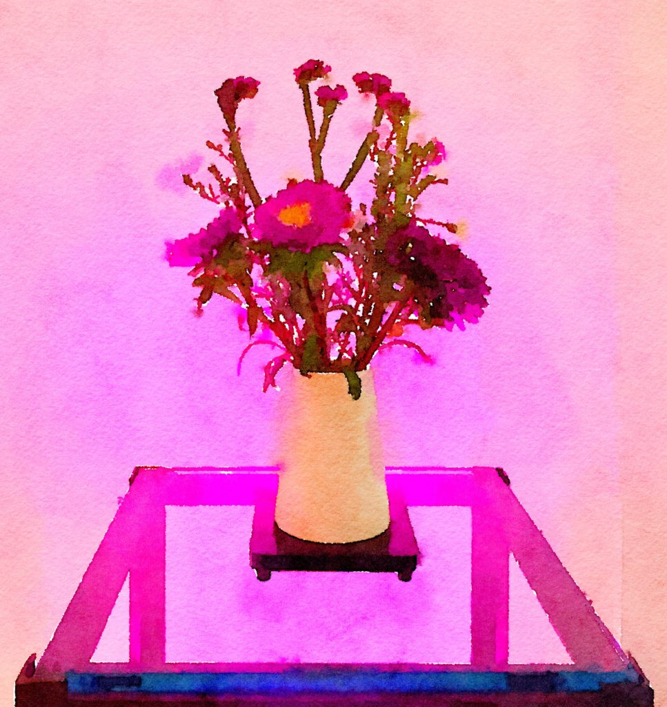 Braiden Blossoms Website Week Thirty-Five: Purple Flowers in a Simple White Vase