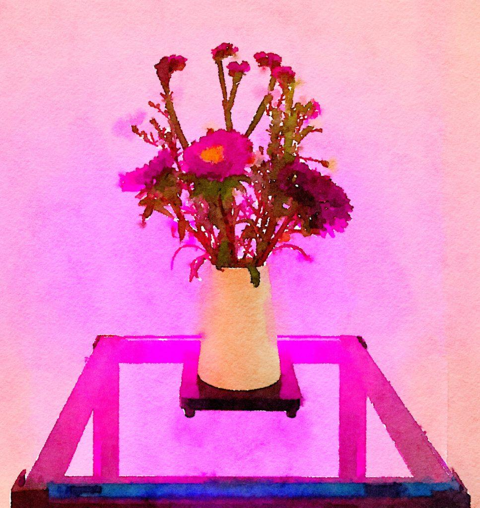 Braiden Blossoms Website Week Thirty-Five: Purple Flowers in a Simple White Vase