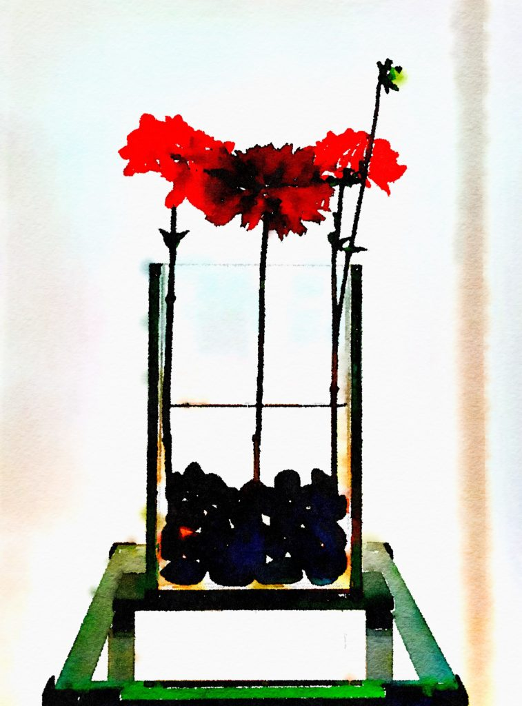 Braiden Blossoms Website Week Thirty-Four: Fresh Trio of Dahlias in Clear Glass Stand Vase Over Black Stones