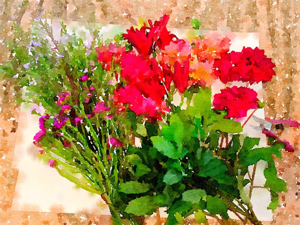 Braiden Blossoms Website Bouquet-a-Week Project Week Thirty-Seven: Fresh Pike Place Market Flowers Laid In a Row Painted in Waterlogue