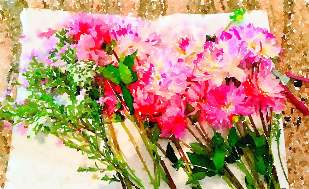 Braiden Blossoms Website Week Thirty-Six: Fresh Pike Place Market Flowers in a Row Painted in Waterlogue
