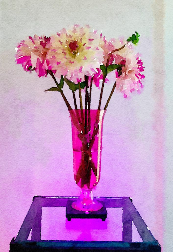 Braiden Blossoms Website Week Thirty-Six: Half a Dozen Dahlias in a Clear Pink Vase