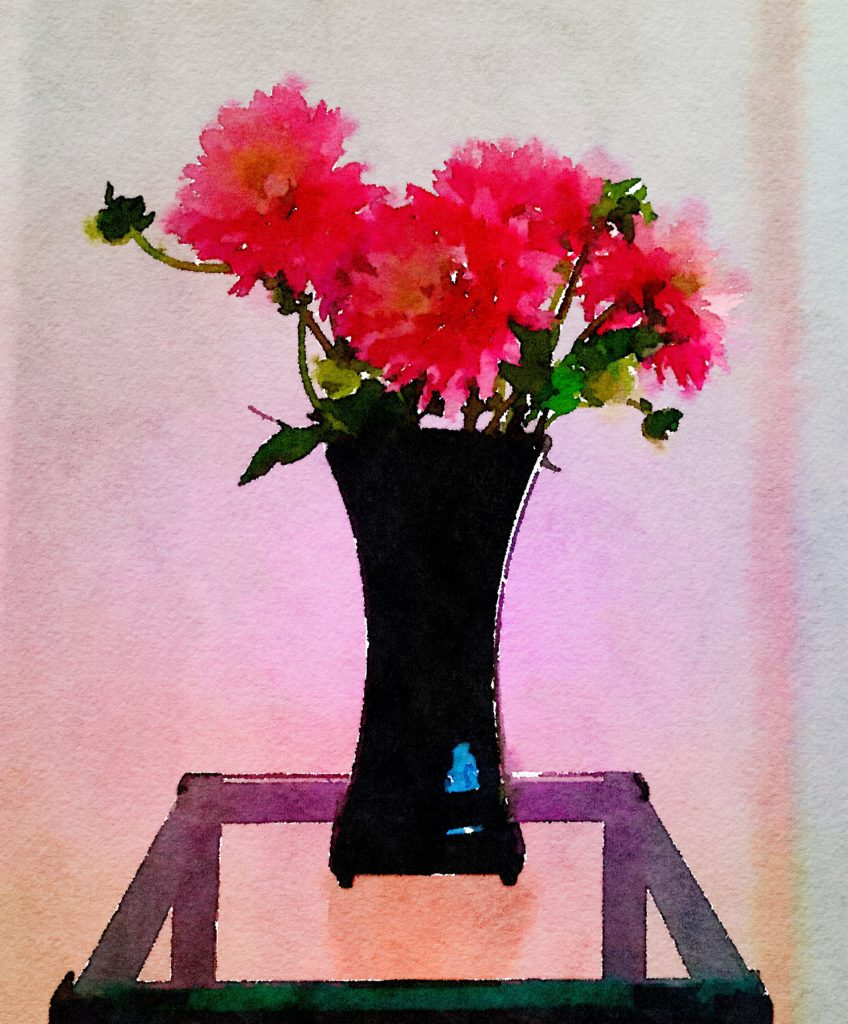 Braiden Blossoms Website Week Thirty-Six: Pink Dahlias in a Glossy Black Vase