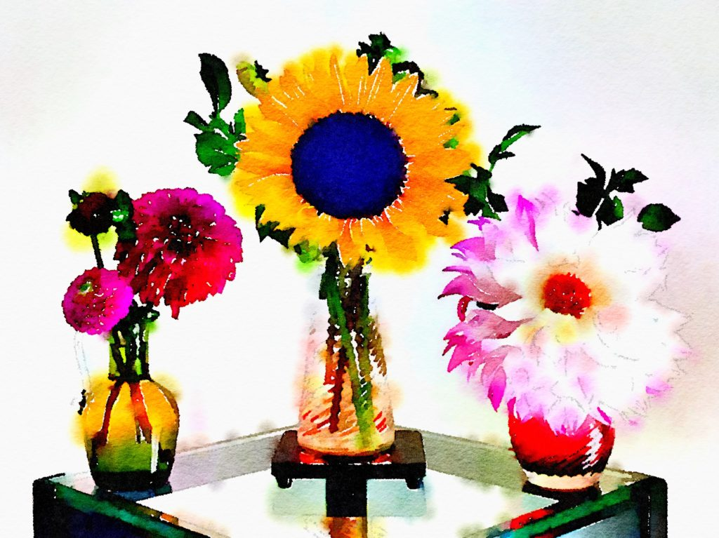 Braiden Blossoms Website Week Thirty-Three: Dahlias and a Sunflower in Three Small Vases