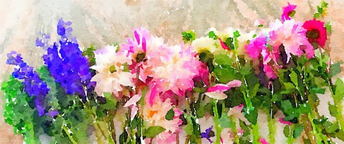 Braiden Blossoms Website Week Thirty-Three: Fresh Pike Place Market Flowers in a Row Painted in Waterlogue
