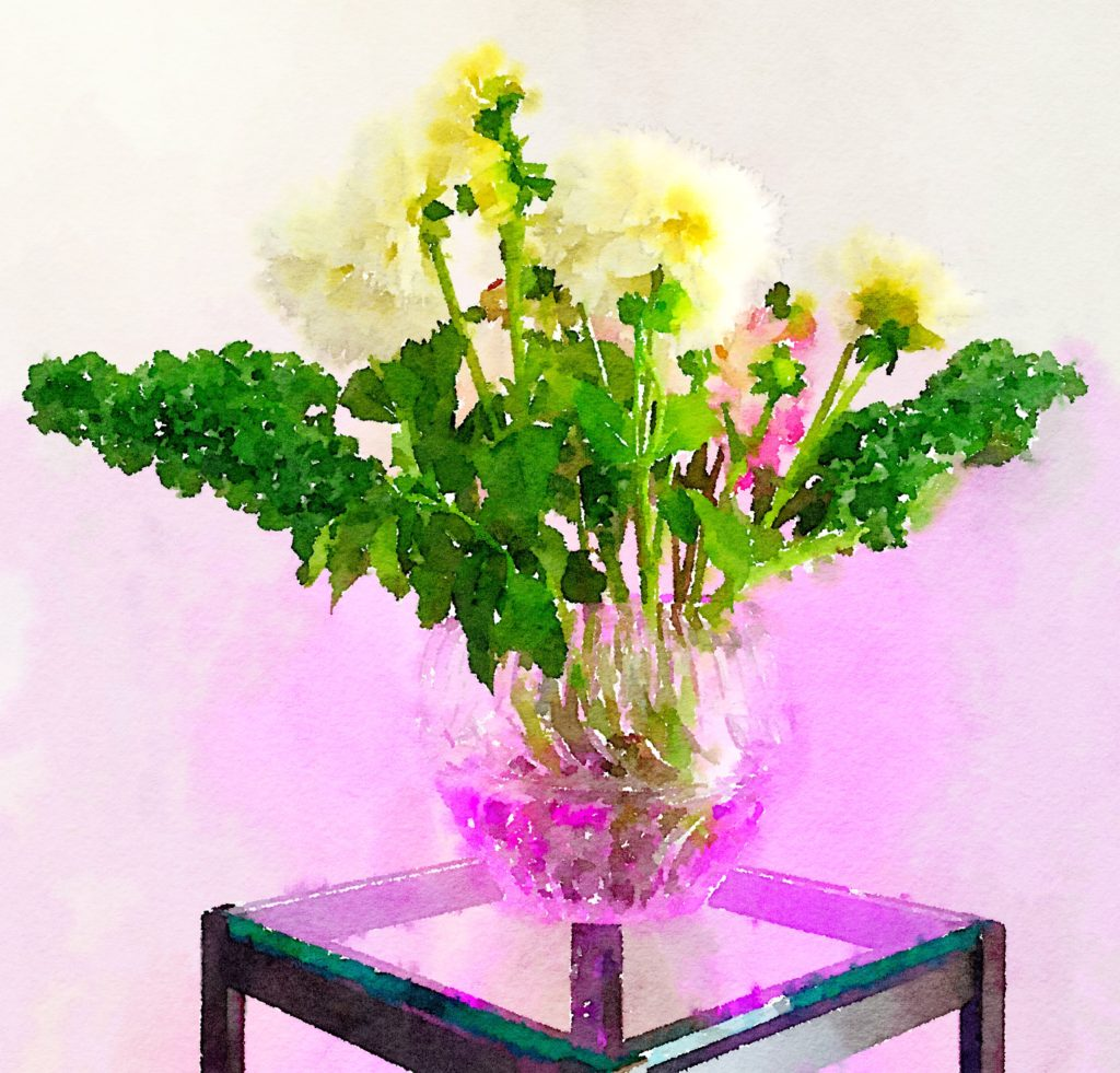 Braiden Blossoms Website Week Thirty-Three: White Dahlias and Curly Kale in a Bulbous Crystal Vase