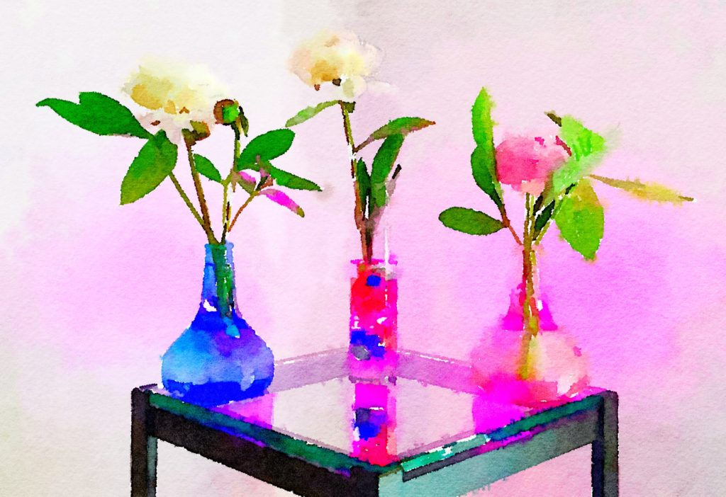 Braiden Blossoms Week Thirty-Two: A Trio of Peonies in Glass Vases in Pink Light