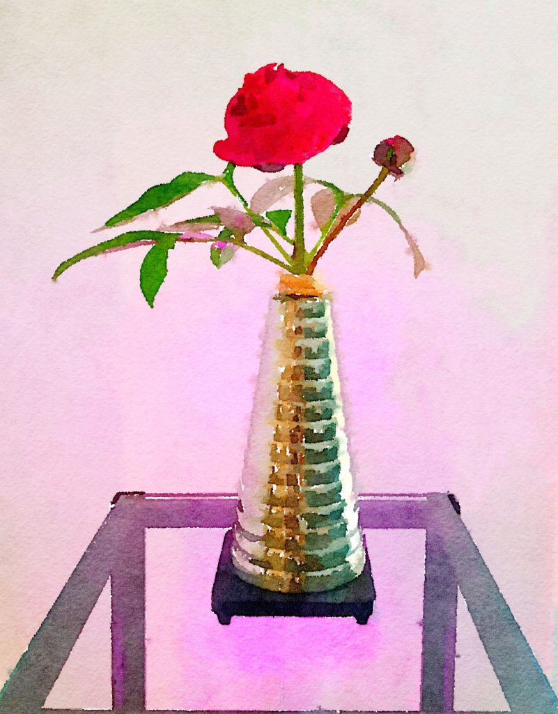 Braiden Blossoms Week Thirty-Two: Deep Pink Peonies in Silver Spiral Vase