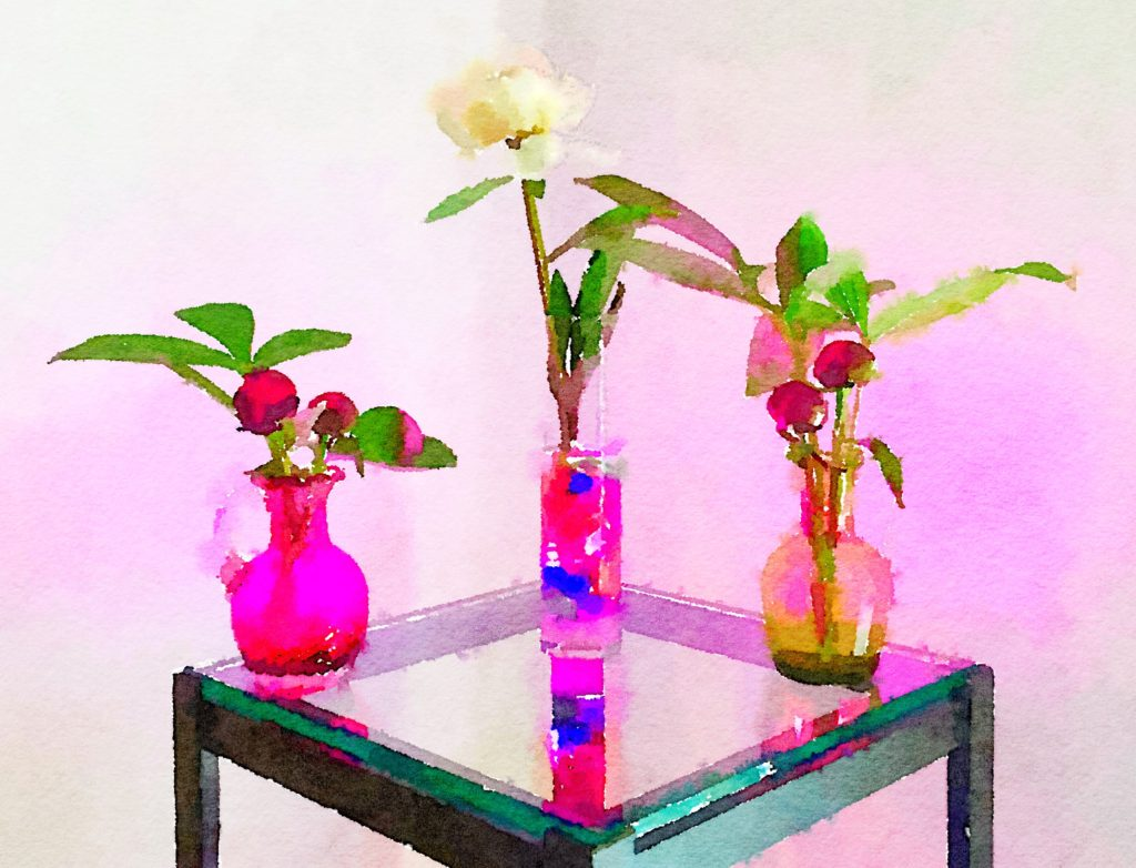 Braiden Blossoms Week Thirty-Two: Trio of Small Vases in Pink Light