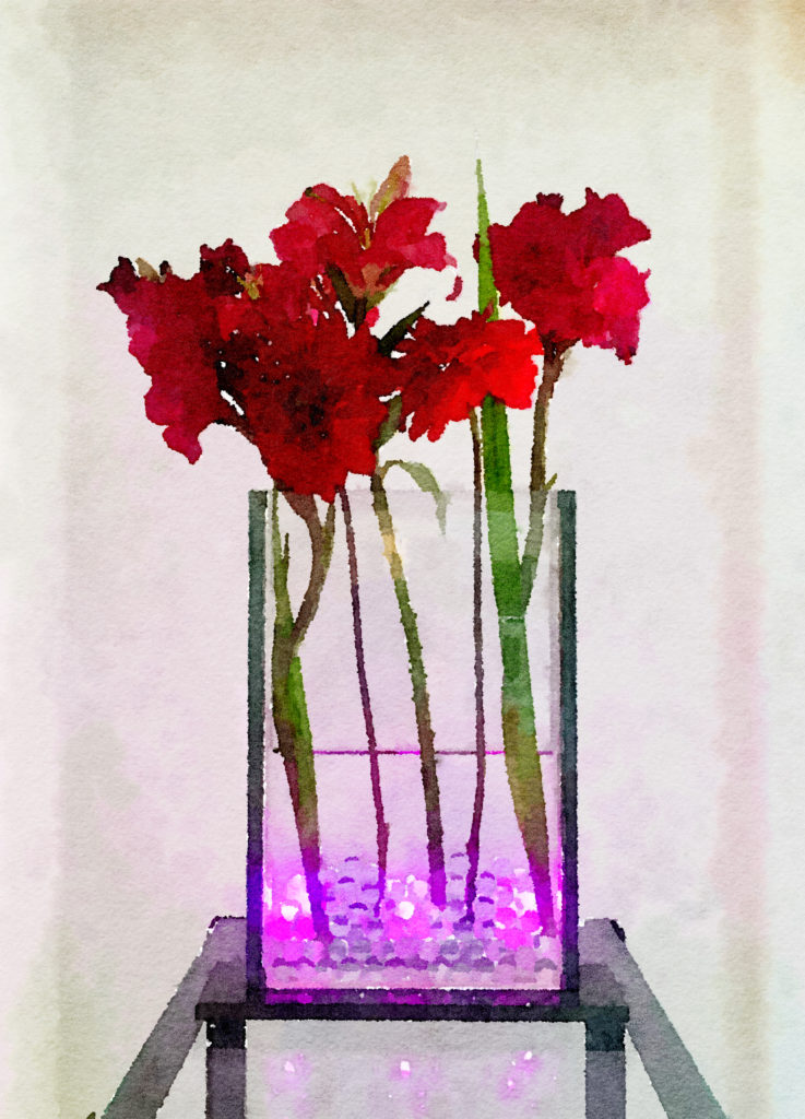 Braiden Blossoms Website Week Forty: Crimson Gladiolas and Dahlias in Asian Vase