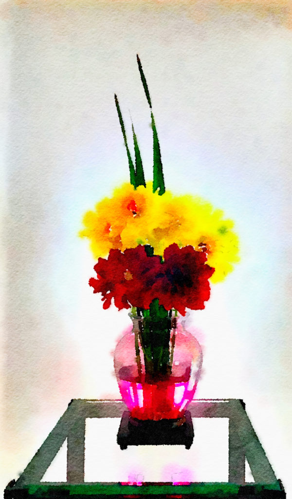 Braiden Blossoms Website Week Forty: Crimson and Yellow Dahlias in a Pink Vase