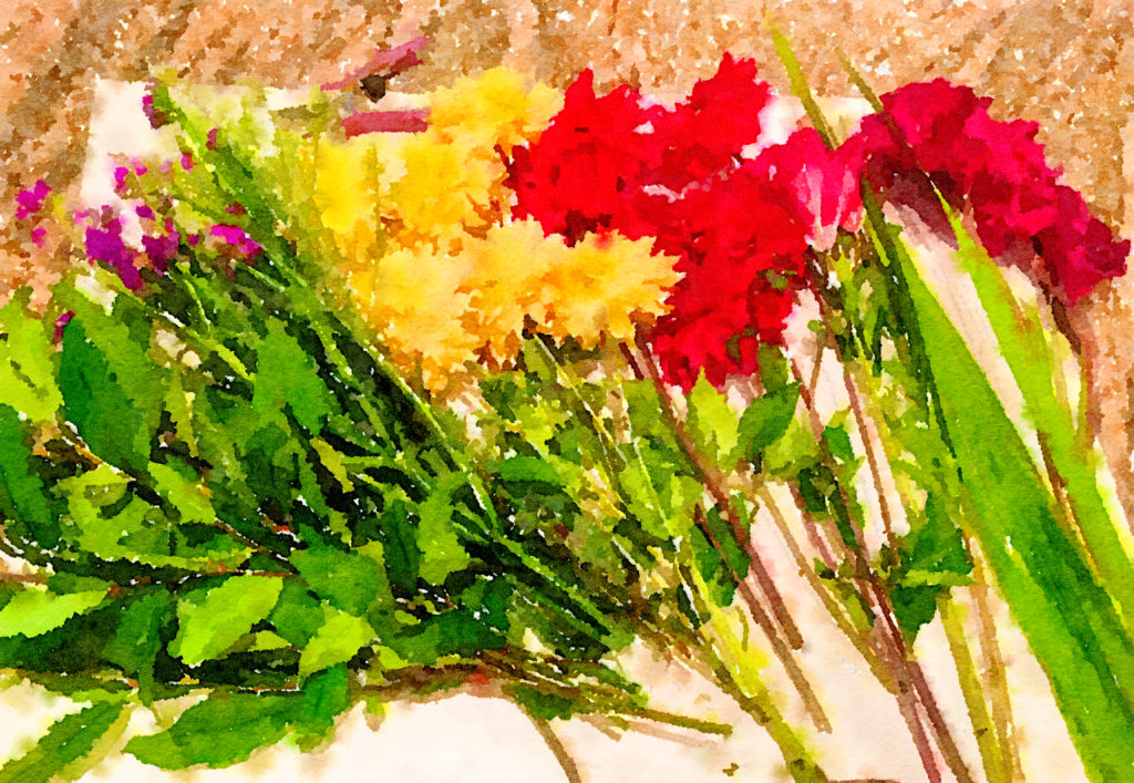 Braiden Blossoms Website Week Forty: Fresh Pike Place Market Flowers in a Row Painted in Waterlogue