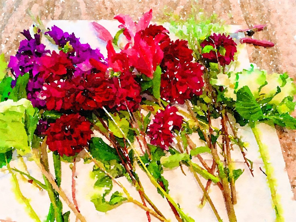 Braiden Blossoms Website Week Forty-One: Fresh Pike Place Market Flowers Laid in a Row and Painted in Waterlogue