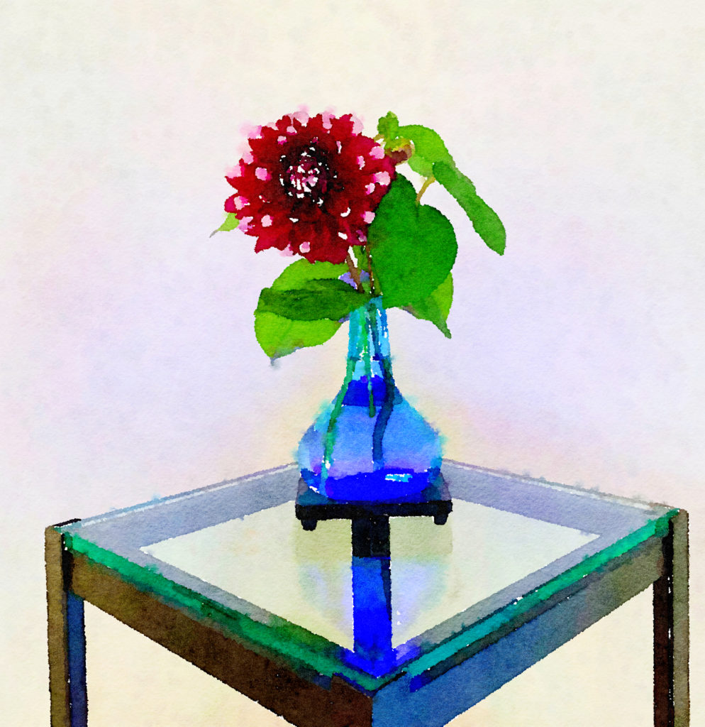Braiden Blossoms Website Week Forty-One: Variegated Dahlia in a Blue Buddha Vase