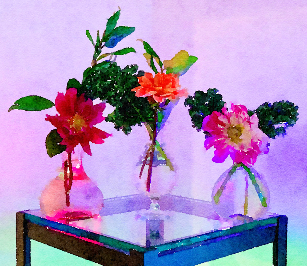 Braiden Blossoms Website Week Forty-Seven: Dahlias in Two Buddha Vases and Clear Glass Vase