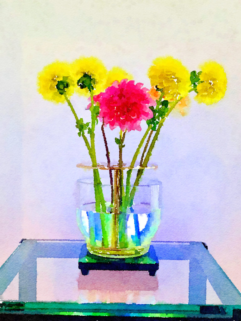 Braiden Blossoms Website Week Forty-Six: Yellow and Pink Dahlias in an Ikebana Vase
