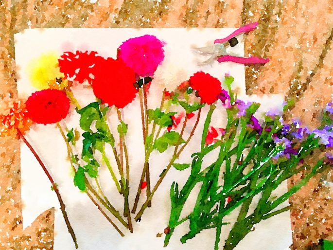 Braiden Blossoms Website Week Thirty-Eight: Fresh Pike Place Market Flowers in a Row Painted in Waterlogue